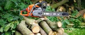 Precision Tree Felling in Marlbank